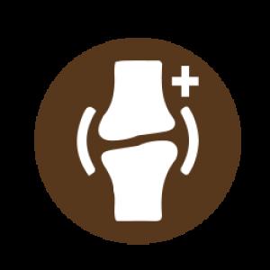 High Calcium Logo